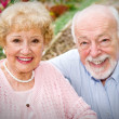 Happy Senior Couple — Stock Photo #6596678