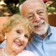 Portrait of Senior Couple — Stock Photo #6596717