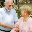 Senior Couple Outdoors — Stock Photo #6596734