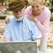 Senior Couple on Computer - Vertical — Stock Photo
