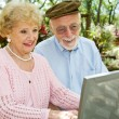 Seniors Enjoy Computer — Stock Photo