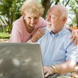Seniors Surfing the Internet — Stock Photo