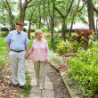Seniors Walking Together — Stock Photo