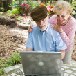 Seniors on Computer with Copyspace - Stock Photo