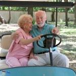 Golf Cart - Backseat Driving — Stock Photo