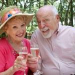 Happy Seniors Toasting — Stock Photo