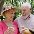 Picnic Seniors - Champagne Toast — Stock Photo