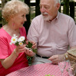 Picnic Seniors - Flowers For Her — Stock Photo