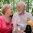 Stock Photo: Picnic Seniors - In Love