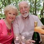 Picnic Seniors Together — Stock Photo