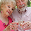 Senior Couple Happy Together — Stock Photo