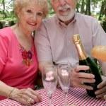 Seniors Enjoying Picnic — Stock Photo