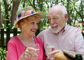 Picnic Seniors - Champagne Toast — Stock Photo
