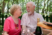 Picnic Seniors - In Love — Stock Photo