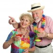 Mature Couple Sightseeing — Stock Photo #6628539