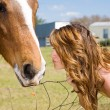 Kiss for Horse — Stock Photo