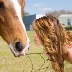 öpücük at için — Stok fotoğraf #6652341