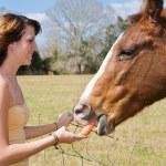 Teen Girl Feeds Horse — Stock Photo
