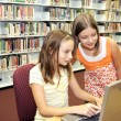 School Library - Research Online — Stock Photo #6667548