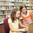 School Library - Research Online — Stock Photo