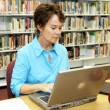 School Library - Research - Stock Photo