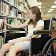 School Library - Selecting Book — Stock Photo