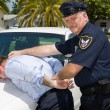 Stock Photo: Police Officer Makes Arrest