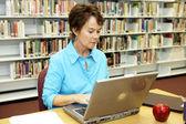 Biblioteca scolastica - ricerca — Foto Stock