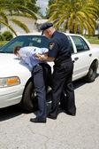 Arresting Drunk Driver — Stock Photo