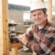 Friendly Construction Worker — Stock Photo #6671429