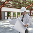 Architect on Jobsite — Stockfoto