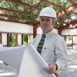 Stock Photo: Engineer on Jobsite