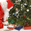Santa Puts Gifts Under Tree - Stock Photo
