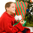Shaking the Christmas Gift - Stockfoto