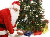 Santa Under the Tree — Stock Photo