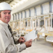 Stock Photo: Industrial Inspector