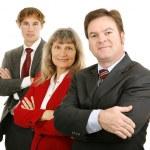 Confident Business Team — Stock Photo #6717555