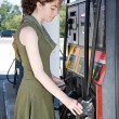At the Gas Pump — Stock Photo #6717867