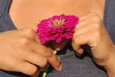 Händer en ung flicka med en blomma på bröstet. — Stockfoto