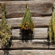 Stock Photo: Drying herbs on a wooden background.