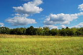 Green meadow against the blue sky. — Stock Photo