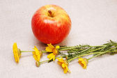 Apple and flowers. — Stock Photo