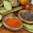 Spices — Stock Photo #6452925
