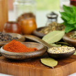 Spices arrangement — Stock Photo #6582484