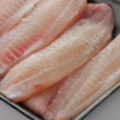 tilapia fillet — Stock Photo