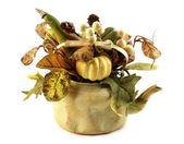 Decorative pot with plants — Stock Photo