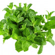 Peppermint — Stock Photo