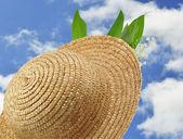 Cappello di paglia — Foto Stock