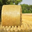 Stock Photo: Hay bails in field