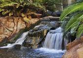 Vodopád v parku — Stock fotografie